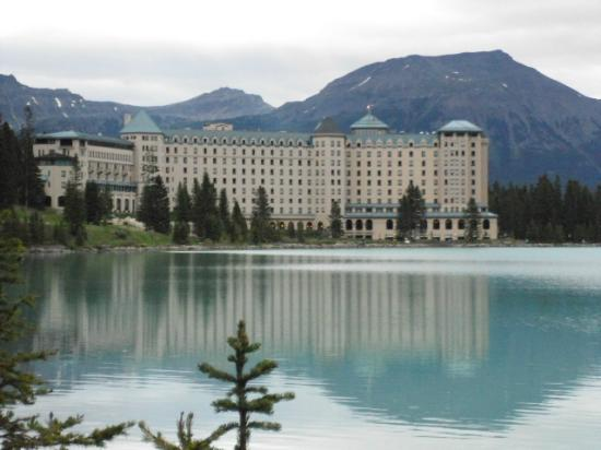 Summer Flowers In Bloom Picture Of Fairmont Chateau Lake Louise Lake Louise Tripadvisor