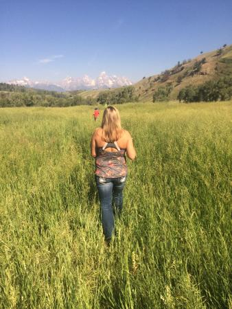 Kelly, WY: Pasture infront of our cabin