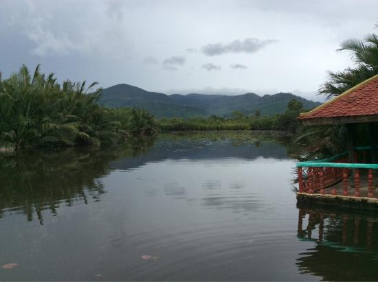 Butterfly Tour - Bike to the Back Road of Kampot