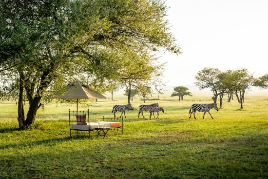 Photo of Singita Sabora Tented Camp Serengeti National Park