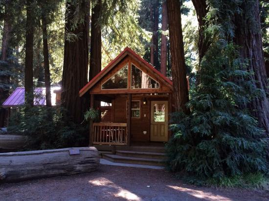 Big sur campground cabins ca campground reviews Campground cabin rentals