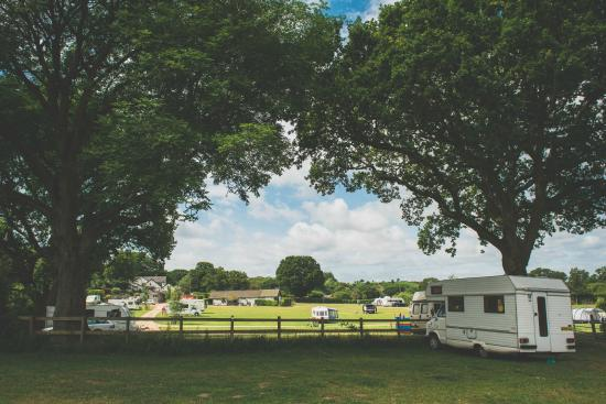 Red Shoot Camping Park Ringwood New Forest National Park Campground Reviews Tripadvisor
