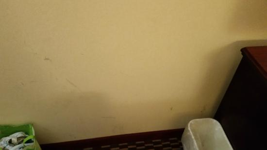 Quality Inn & Suites Kingston: general filth in room