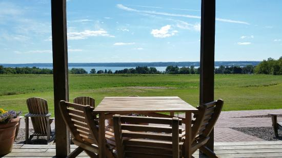Keuka Park, NY: Vineyard View