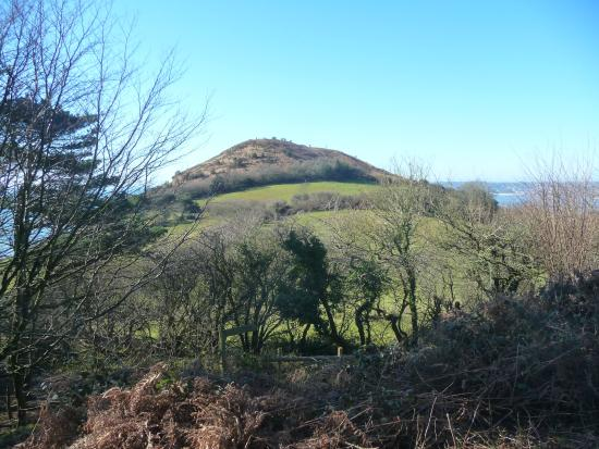 Charmouth, UK: Golden Cap from Thorncombe Woods