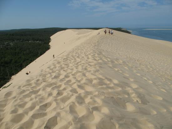 dune de pilar picture of dune du pilat la teste de buch tripadvisor. Black Bedroom Furniture Sets. Home Design Ideas