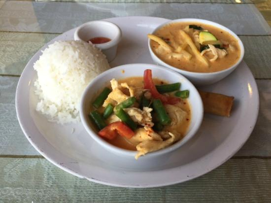 L4 chicken yellow curry gang leuang gai and l7 chicken for Aroy thai cuisine