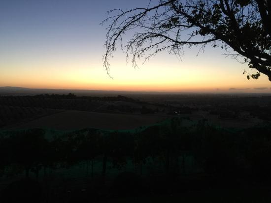 Photo of Seven Quails Vineyards Bed & Breakfast Paso Robles
