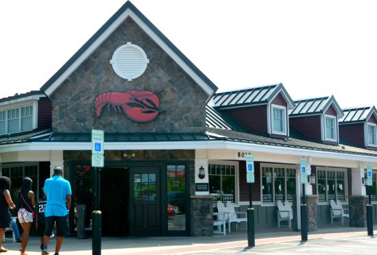 Busy But One Of The Better Red Lobsters Picture Of Red Lobster Concord