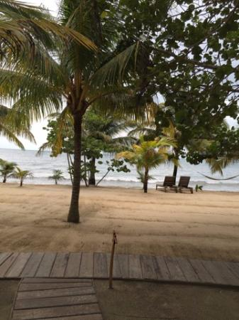 Kanantik Reef & Jungle Resort: View of beach from cabana
