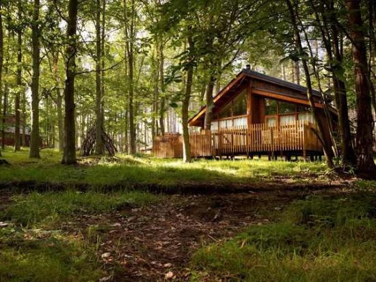 Forest Holidays Forest Cabin Picture Of Forest Holidays Forest Of Dean Gloucestershire