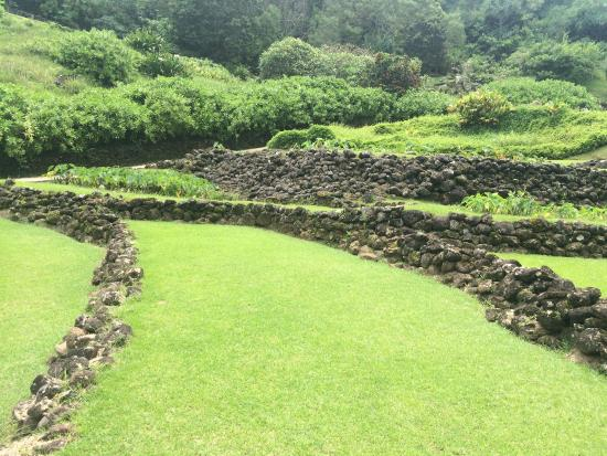 Picture Of Limahuli Garden And Preserve
