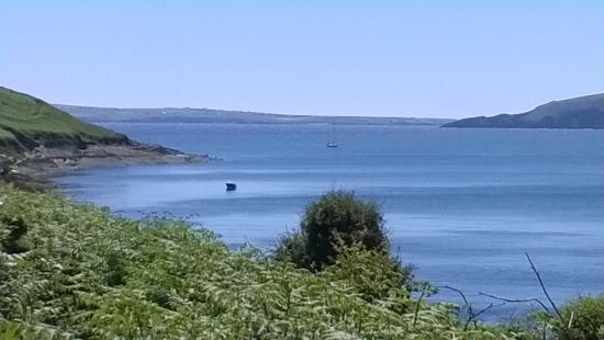 Kinsale Nature and Maritime Walking Tour