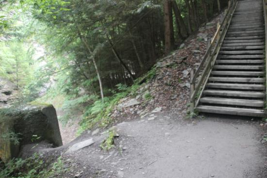 Dansville, NY: Stony Brook State Park - Go left at the base of the stairs for the 3rd falls