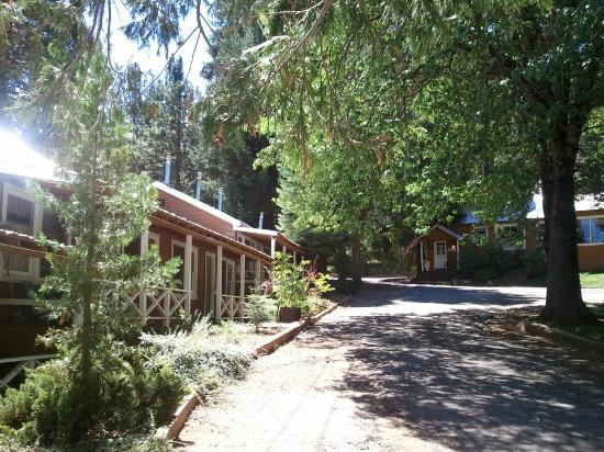 Greenville, CA: Summertime at the Hideaway