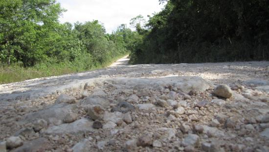 Mariposa Jungle Lodge: Sample of the rough road, make sure to have a spare tire!