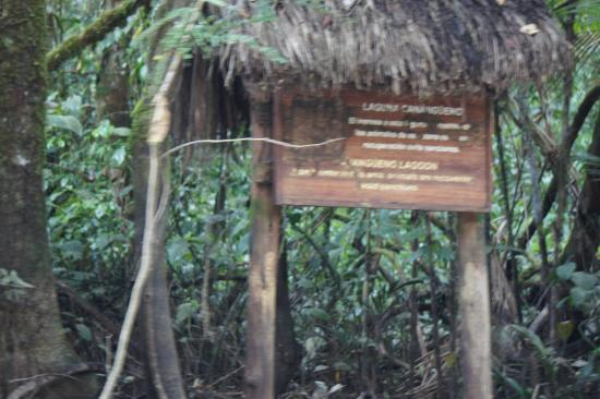 Cuyabeno Lodge: Eingang