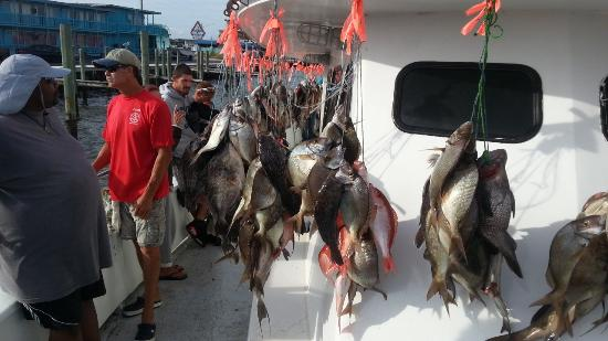 Boat picture of capt stacy fishing center atlantic for Capt stacy fishing center
