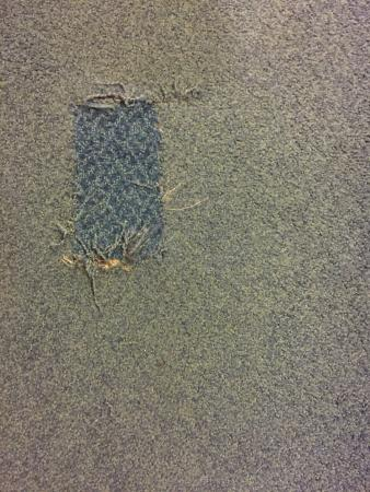 Spokane Valley, Вашингтон: When you patch the rug at least use the same carpet!