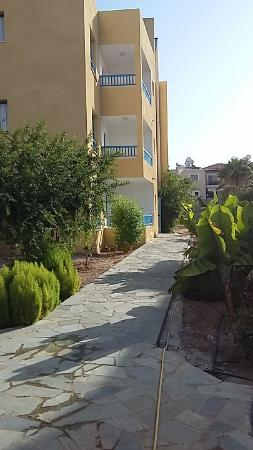 Kefalonitis Hotel Apts.: View to our apartment (ground floor) and surrounding plants