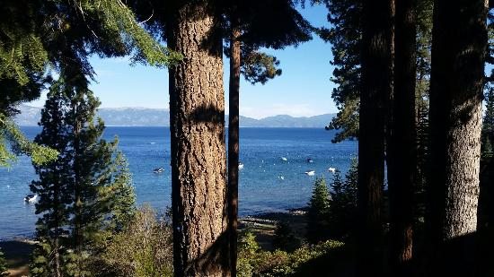 Photo of Chinquapin Tahoe City