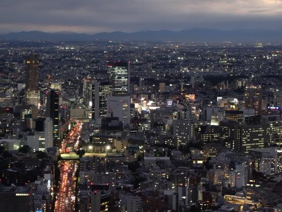 photo1.jpg - Picture of Tokyo City View Observation Deck (Roppongihills), Min...