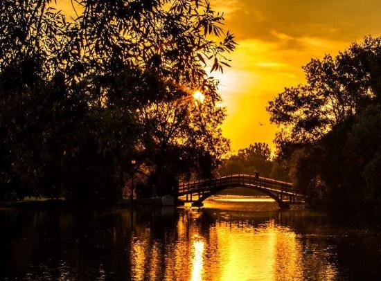 """Stratford, Canada: Is this golden shot of the Avon the very definition of """"gorgeous""""? We're pretty sure it is."""