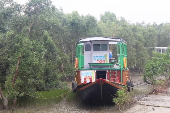Sundarban Chalo Day Tours