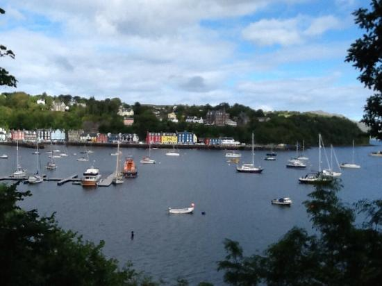 Tobermory Boat Charters