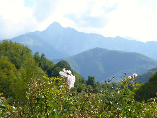 Casola in Lunigiana, Italy: Another view from the restaurant.