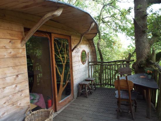 Ty mawr xxxxx picture of living room treehouses for 8 living room tree houses powys