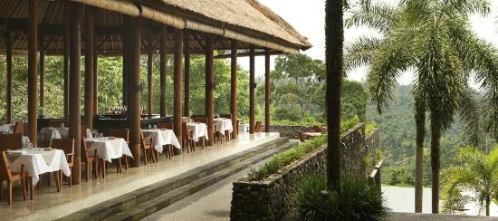 Plantation at Alila Ubud