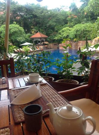 Victoria Angkor Resort & Spa: View from pool restaurant