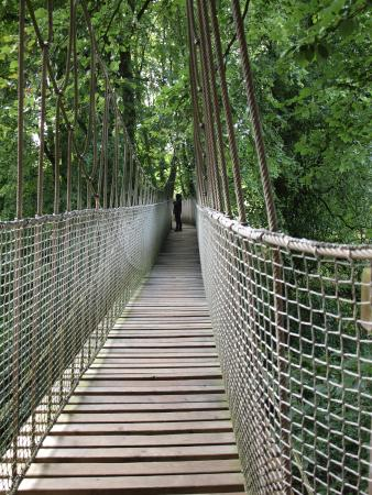 The Alnwick Garden: Cross me if you dare - Near to Tree House outside of garden