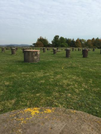 Durrington, UK: Woodhenge circle (from ground)