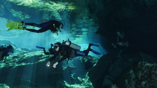 Cenote chac mool picture of dive shop mexico playa del - Dive shop mexico ...