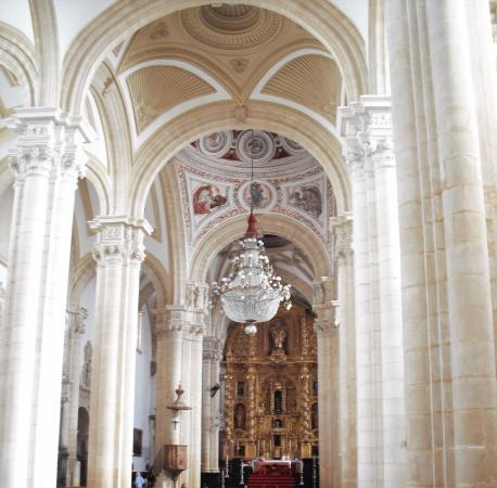Interior de la catedral de Baeza - Picture of Cathedral de Baeza, Baeza - Tri...