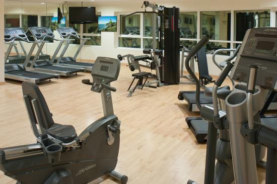 Stay fit in our well equipped gym with sauna steam rooms