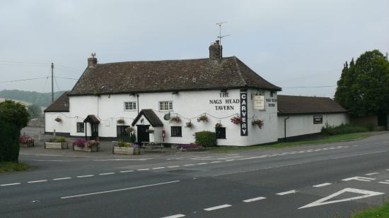 Last Minute Meal Out The Nags Head Tavern Taunton Traveller Reviews Tripadvisor