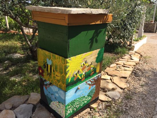 Solta Island, Croatia: Some of the hives painted by children