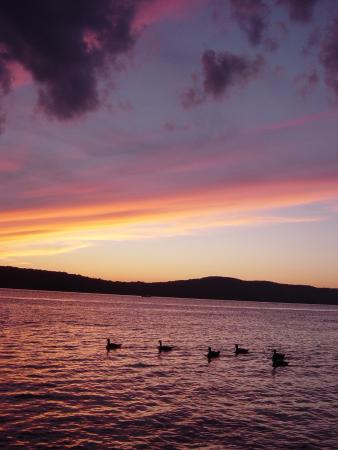 Hastings on Hudson, NY: Just two minutes away