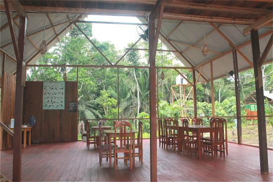 Amazon Lodge Tambopata