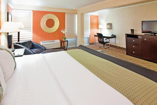 Holiday Inn Manhattan at The Campus: Single Bed Guest Room