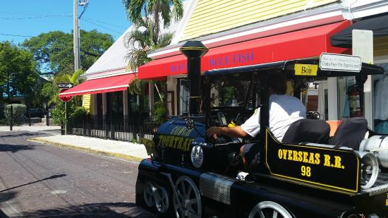The conch train and red fish blue fish in key west for Red fish blue fish key west