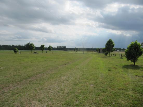 Williamston, NC: Wide open spaces