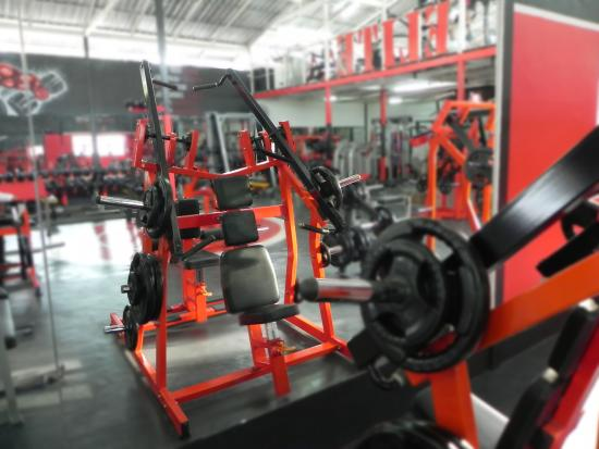 Elite Gym and Fitness