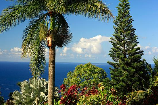 The Garden Of Eden Offers Many Spectacular Views