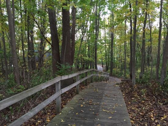 Augusta, MI: Walkway from cottages and rooms to the lodge