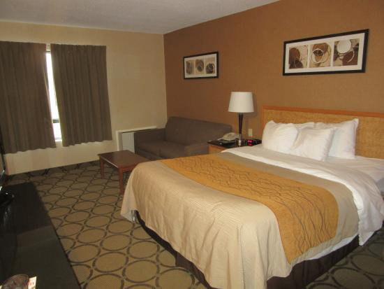 Bed picture of comfort inn highway 401 kingston for Comfort inn bedding