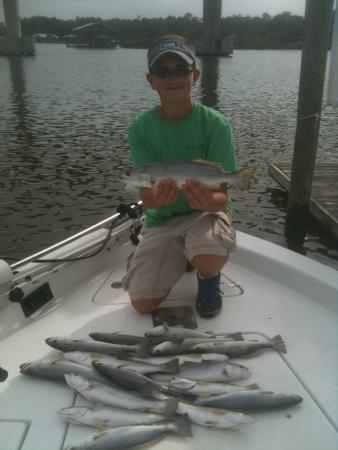 Triple tail black fish picture of underdog fishing for Dauphin island fishing report